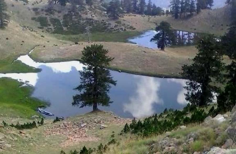 Ursa Trail 100